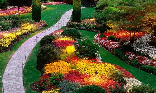 Landscape Design Pittsburgh Pa Arbor Tree Care